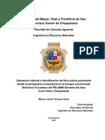 261502943-Tesis-Valoracion-de-la-flora-nativa.pdf