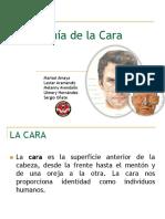 anatomadelacara-161126175042.pdf