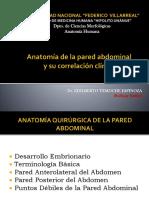 Anatomía de La Pared Abdominal