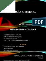 FISIOLOGIA CEREBRAL ANESTESIO