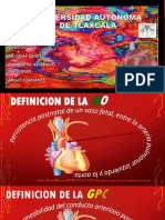 conducto arterioso persistente.pptx