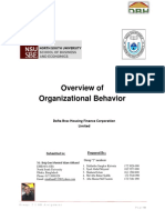 Organizational-Behavior_DBH_Report.docx