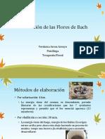 Elaboración de Las Flores de Bach (Clase 14)