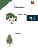 Árboles Nativos.docx