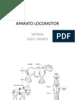 APARATO LOCOMOTOR-OSEO CRANEO.pptx