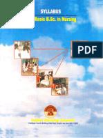 P.B.B.Sc Nsg. Syllabus original.pdf