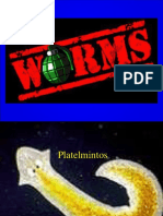 C4-platel.ppt