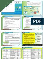 Print Leaflet.docx