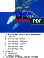 Amino Acids (2)