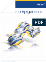 A Guide to Epigenetics