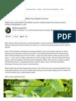 How to Grow Basil _ Houzz.pdf
