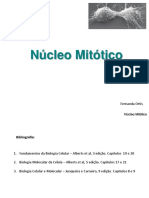 Fernanda - Tema 43 -  Nucleo Mitotico med 2016.pdf