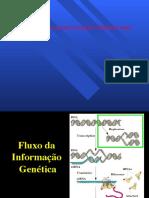 replicação.pdf