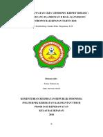 ASUHAN KEPERAWATAN CKD ( PAK SANDRA ).docx