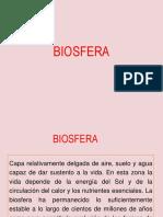 Contaminación Ambiental 2 1