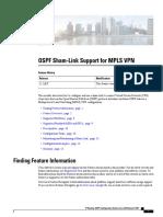 OSPF Sham Link