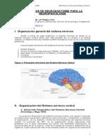 Elementos de neuroanatomía para la neuropsicología.pdf