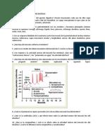 Cuestionario_Absorción de Glucosa y Peristaltismo