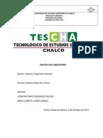 PRACTICA LABORATORIO.docx