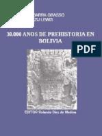 30 Mil Años de Prehistoria en Bolivia - Ibarra Grasso y Querejazu Lewis