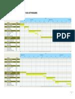 Cronograma Preliminar de Actividades