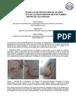 proyecto de mallas de protección de taludes - miguel eulufi.pdf