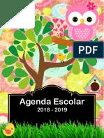 AGENDA 2018-2019
