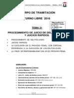 TEMA 21 PROCEDIMIENTOS DELITOS LEVES Y RAPIDOS 2016 6-Oct T-Libre.pdf