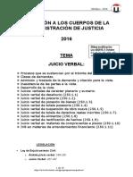 TEMA JUICIO VERBAL 2016.pdf
