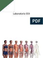 Laboratorio EEII.pdf