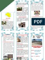 TRIPTICOS-LAMBAYEQUE-docx