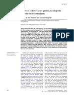 Dd092_local Cell Curvature Guides Pseudo Podia
