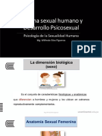 Sx Humana