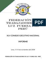 InformeConse-LuzyFuerza