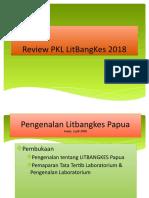 Review PKL LitBangKes 2018.pptx