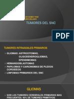 Tumores Del Snc 2