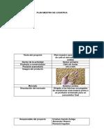 PLANTILLA PLAN MAESTRO(1).docx