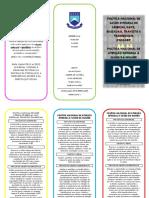SAÚDE COLETIVA 1 - FOLDER PN's.docx
