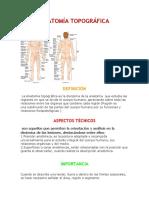 Anatomía Topografia Investigacion