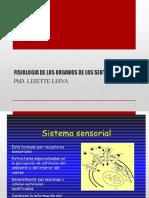 Fisiologia de Los Organos de Los Sentidos