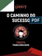 O CAMINHO DO SUCESSO .pdf
