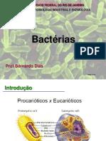 Bacterias - Aula 4