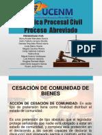Presentacion Practica Procesal Civil