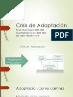 Expo Crisis de Adaptacion.pptx