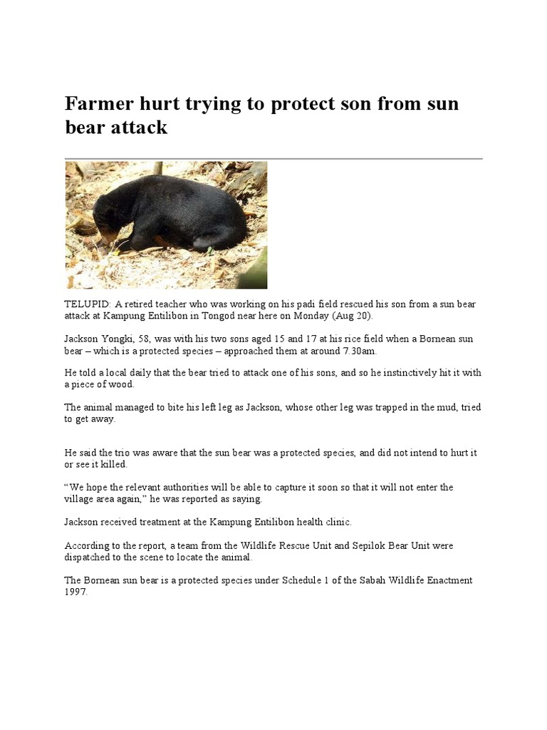 Farmer Hurt Trying to Protect Son From Sun Bear Attack