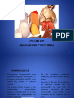 Amino Acid o Sy Protein as Clase Nueva