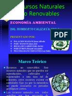 Recursos naturales no renovables.ppt