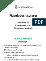 T.cruzi Leishmania y Trichomonas Sem 6