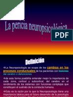 Pericia neuropsicologica