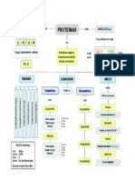 Mapa Conceptual - 4 Proteínas